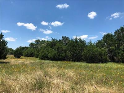 Dripping Springs Residential Lots & Land For Sale: 551 Blue Ridge Dr