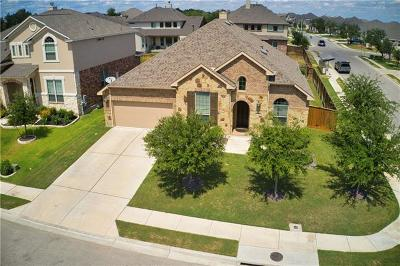 Round Rock Single Family Home For Sale: 3933 Cole Valley