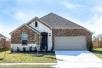 Pflugerville Single Family Home For Sale: 5301 Anaheim Ave