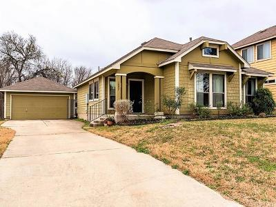 Kyle Single Family Home For Sale: 1097 Twin Cv