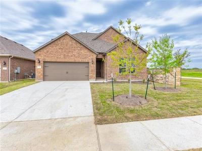 Leander Single Family Home For Sale: 1317 Mustang Brook Dr