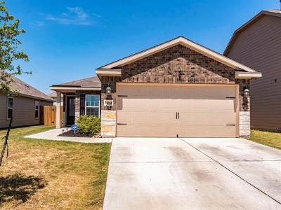 Kyle Single Family Home For Sale: 1484 Treeta Trl