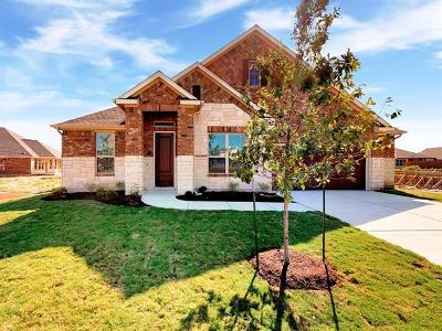 Hutto Single Family Home For Sale: 119 Skylark Ln