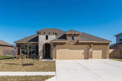 Pflugerville Single Family Home For Sale: 20037 Navarre Ter