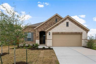 Pflugerville Single Family Home For Sale: 4125 Gildas Path