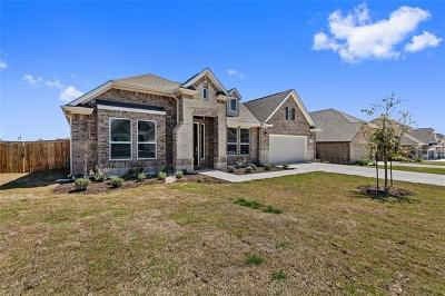 Hays County Single Family Home For Sale: 111 Short Bush Pass
