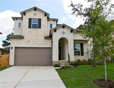 Austin Single Family Home For Sale: 6709 Vitruvius Dr