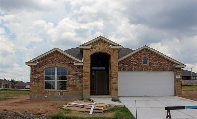 Pflugerville Single Family Home For Sale: 733 Coltrane Dr