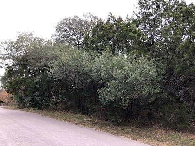 Jonestown TX Residential Lots & Land For Sale: $40,000