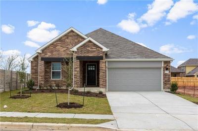 Pflugerville Single Family Home For Sale: 17333 Casanova Ave