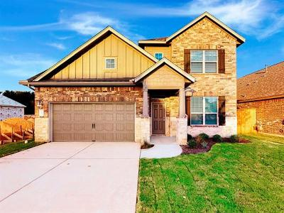Hays County, Travis County, Williamson County Single Family Home For Sale: 12609 Iron Bridge Dr