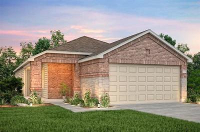 Williamson County Single Family Home For Sale: 701 Sonterra Blvd