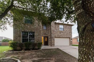 Pflugerville Single Family Home For Sale: 18604 White Water Cv