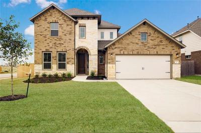 Pflugerville Single Family Home For Sale: 20721 Sand Lark Ln