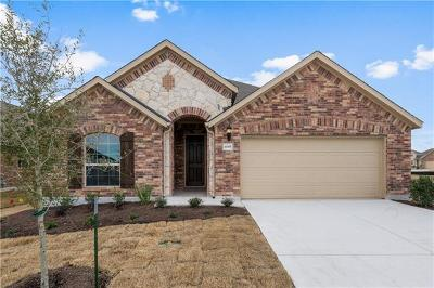 Pflugerville Single Family Home For Sale: 4005 Tin Taqel Path