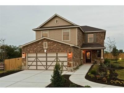 Kyle Single Family Home For Sale: 306 Sunnyside Dr