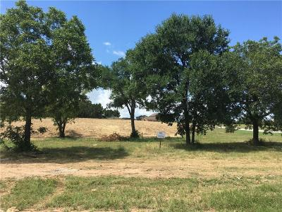 Liberty Hill Residential Lots & Land For Sale: 705 Buffalo Trl