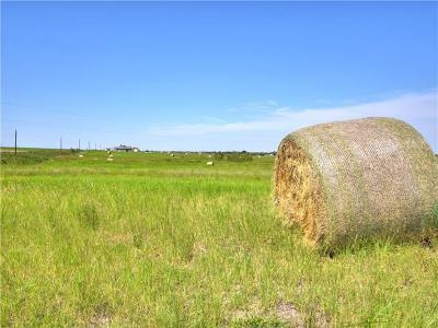 Granger TX Farm For Sale: $134,900