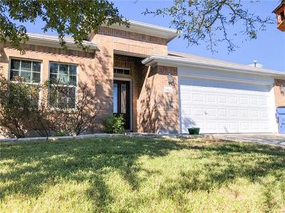 Pflugerville Single Family Home For Sale: 18524 Sandy Bottom Dr