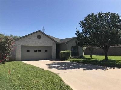 Burnet County Single Family Home For Sale: 320 Limestone St