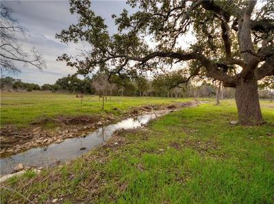 Liberty Hill Residential Lots & Land For Sale: 211 County Road 279