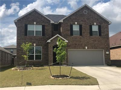 New Braunfels Single Family Home For Sale: 2067 Stepping Stone