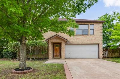 Pflugerville Single Family Home For Sale: 807 Purple Martin Dr