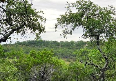Dripping Springs Residential Lots & Land For Sale: 1001 Roy Creek Trl