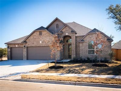 Round Rock Single Family Home For Sale: 3946 Stanyan Dr