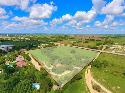 New Braunfels Single Family Home For Sale: 199 Adam St