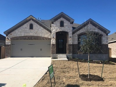 Round Rock Single Family Home For Sale: 1230 Chad Dr