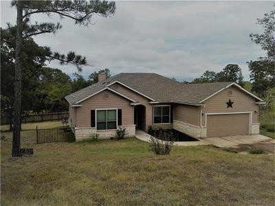 Bastrop Single Family Home For Sale: 223 Makaha Dr