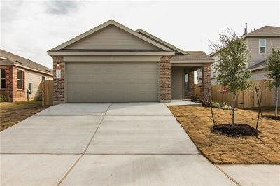 Austin Single Family Home For Sale: 10709 Dimitrios Dr