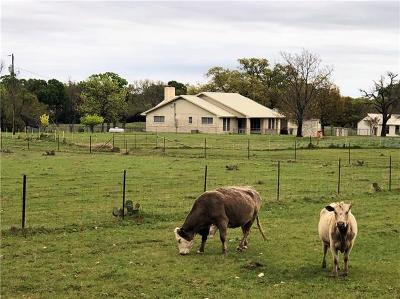 Burnet County, Lampasas County, Bell County, Williamson County, llano, Blanco County, Mills County, Hamilton County, San Saba County, Coryell County Farm For Sale: 4342 W State Highway 29