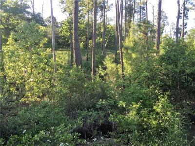 Bastrop County Residential Lots & Land For Sale: TBD N Pahihi Dr