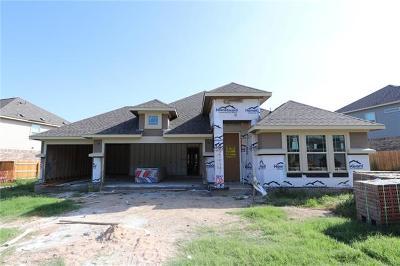 Buda Single Family Home For Sale: 224 White Oak Dr