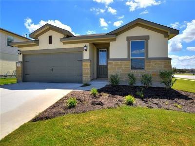 Single Family Home For Sale: 8101 Pescara Cv