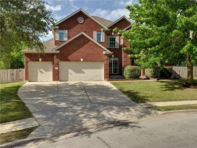 Pflugerville  Single Family Home For Sale: 2801 Misty Shore Ln