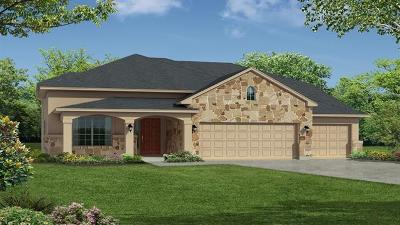 Leander Single Family Home For Sale: 2917 Fire Rock Dr