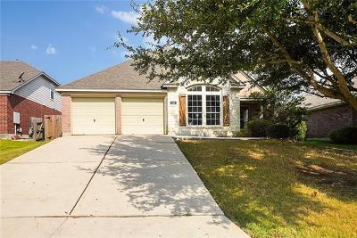 Kyle Single Family Home For Sale: 349 Otono Loop