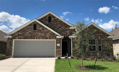 Pflugerville Single Family Home For Sale: 17124 Casanova Ave