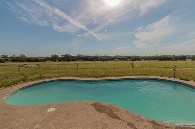 Georgetown Single Family Home For Sale: 1450 County Road 245