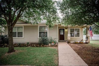 Kyle Single Family Home For Sale: 301 McGarity