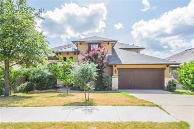 Single Family Home For Sale: 22225 Red Yucca Rd