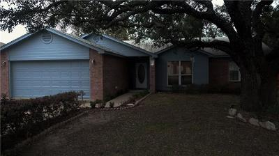 Burnet Single Family Home For Sale: 307 Fox Xing