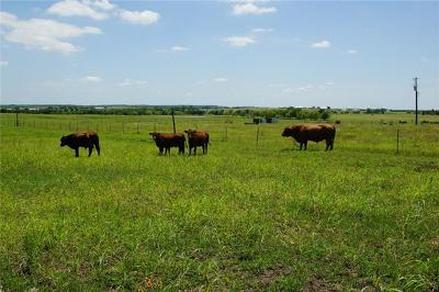 Bell County, Burnet County, Comal County, Fayette County, Hays County, Lampasas County, Lee County, Llano County, San Saba County, Travis County, Williamson County Farm For Sale: Fm 972