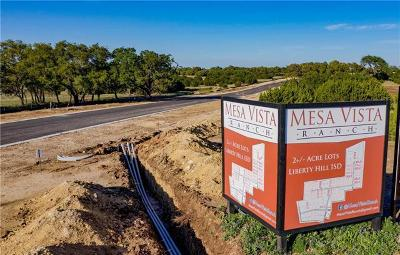 Residential Lots & Land For Sale: 104 Lantana Bend Trl