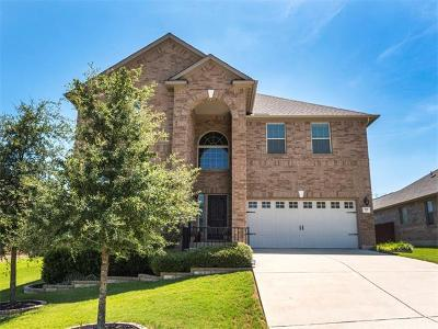 Hays County Single Family Home For Sale: 188 Rock Vista Run