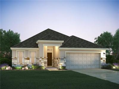 Buda, Kyle Single Family Home For Sale: 543 Patriot Dr