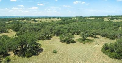 Farm For Sale: 3143 N Us Hwy 281 #Lot 3B